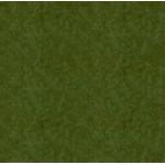 Вельвет/Зелёный +48 руб